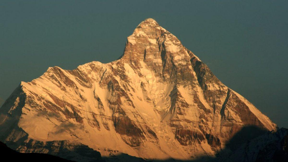 Primavera Amara in Himalaya
